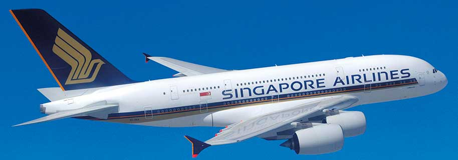 Image result for pesawat singapore airlines